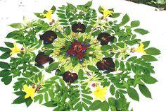 Garden Mandalas