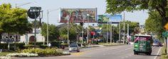 Best Restaurants on International Drive Orlando