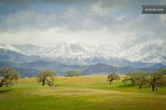 Santa Ynez Valley Get Away in Santa Ynez Places In California, California Dreamin', Solvang California, Santa Maria Valley, Santa Ynez Valley, Santa Barbara County, Central Coast, Fine Art Photography, Beautiful Places