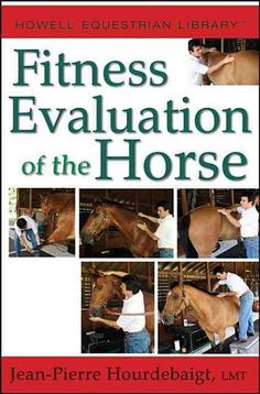 Legit Horse Purchase?