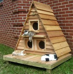 Sharp-looking Cat Cottage Triplex is a unique wooden cat house for an outdoor kitty hangout. Three separate compartments Can comfortably house three to six cats,. Outside Cat House, Wooden Cat House, Gatos Cat, Cat Playground, Cat Room, Cat Condo, Outdoor Cats, Pet Furniture, Cat Supplies