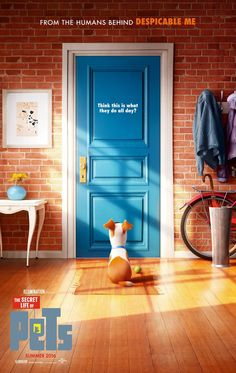 """The Secret Life of Pets"" - Looks HILARIOUS... might be Lil Man's 1st Movie"