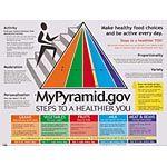 My Pyramid Chart