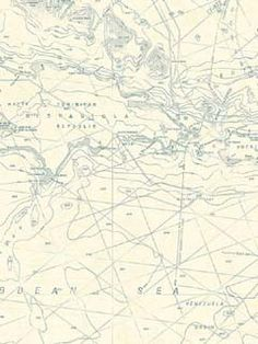 Maps Nautical Wallpaper $22.99 per roll