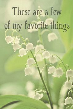 Love Lilly of the Valley....