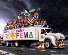 Femacamp