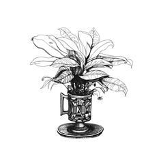 discover great herbal tea, shop @ www.teastreet.nl