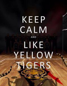Keep calm and like yellow tigers