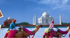 Planning a tour but confused which Tour and travel agency to contact?  Travel 4 Delight is one of the best tour and travel agency in Delhi, offers best services like hotel booking, flight booking etc at highly affordable prices. For more information quick visit at Travel 4 Delight! And Call on +919899074486.