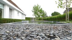 minimalistische tuin, strakke tuinarchitectuur