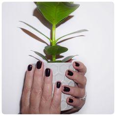 #nailappointment #manicure #pedicure #dippingpowdernails #cuticlecare #handmassage #nailfile #nailinspo #nailsofinstagram #shellacmanicure #manicureready #shellacnails #cndnails #localnailtech #mobilenailtech #mobilenailtechnician #perfectnails #nailsonfleek #nailsnailsnails #mobilebeautician #mobilebeauticians Pedicure, Mobile Nail Technician, Cuticle Care, Shellac Manicure, Hand Massage, Nail File, Perfect Nails, Nail Inspo, Nails On Fleek