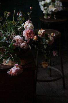 climbing garden roses that pierce my soul.