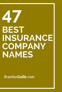 47 Best Insurance Company Names