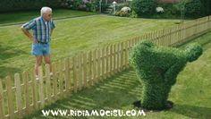Alla faccia del vicino ...chi ce l'ha mo l'erba più verde!?