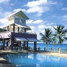 Divi Tamarijn Aruba Beach Resort- Aruba -  my favorite bar