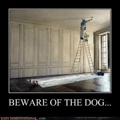 Took me a while to find the dog lol