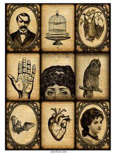 Victorian palmistry cards