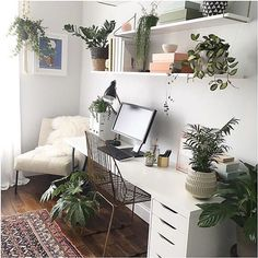 Dream workspace. White desk, plants + a persian rug / @workspacegoals on Instagram