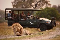 Spoil yourself with an unforgettable 7 night Botswana wildlife experience and enjoy complimentary flights between the camps Dry Tortugas, Guggenheim Bilbao, Amor Animal, Okavango Delta, Private Games, Nocturnal Animals, Night Driving, Before Sunrise, Game Reserve