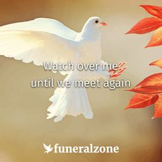 Quotes about grief & loss: Watch over me until we meet again