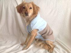 Abrigo perro reversible azul y beige, chaleco, Cazadora, Ropa perro, ropa mascotas. Diseño exclusivo de Mucka Pets. de MuckaPets en Etsy