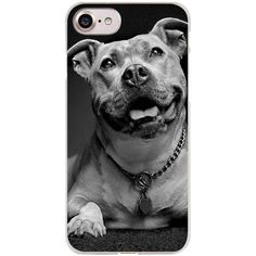 Pit bulls Clear Cell Phone Case Cover for Apple iPhone 4 4s 5 5s SE 5c 6 6s 7 Plus