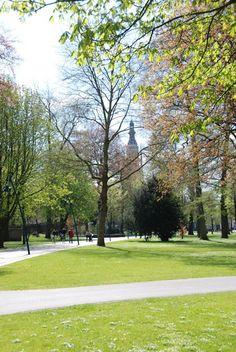 Doordat de bomen in het Valkenberg nog maar weinig of geen blad hebben is de Grote Toren er goed te zien.