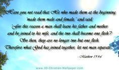 Bible Quotes About Marriage Pinkai Qinchristian Gonzales On Faith  Pinterest  Faith