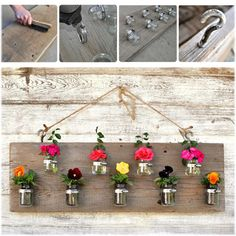 Hanging garden DIY. Possibly for in door plants?!?!