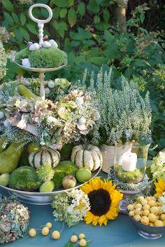 Kürbisse, Sonnenblumen und ganz viel Grün: So präsentiert sich der Herbst auch sehr schön