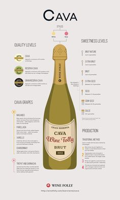 Cava Spanish Sparkling Wine Profile by Wine Folly - http://winefolly.com/review/on-finding-great-cava-sparkling-wines/