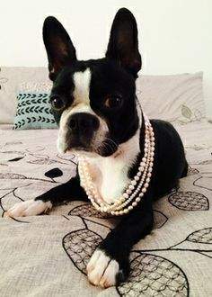 I have to wear my pearls before I go for my walk.