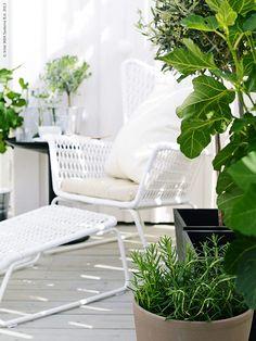 Inred en liten hörna för sommar och vila på altanen eller balkongen. Satsa på många växter för att skapa en känsla av att sitta innesluten i grönska.