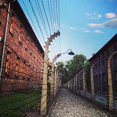 Auschwitz- speechless-Laundry Basket Quilts