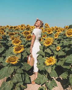 Where to Find Sunflower & Lavender Fields in Provence Sunflower Feild, Sunflower Field Pictures, Sunflower Pics, Ideas Fotos Tumblr, Sunflower Field Photography, Summer Aesthetic, Lavender Fields, Summer Photos, Picture Poses