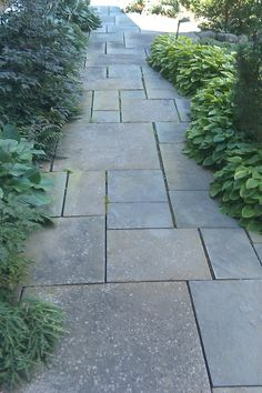 bluestone path