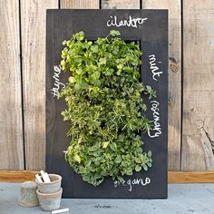 Mini vertical herb garden - love the chalk addition! This would be great in the kitchen or on the patio.