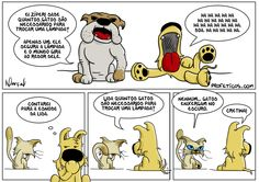 Zíper e a charada cachorro gato lâmpada
