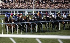 Kim Muir: Domesday Book strikes for Andrews  https://www.racingvalue.com/kim-muir-domesday-book-strikes-for-andrews/