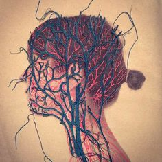 Embroidery Art, Frankenstein, and the Fragility of the Human Body
