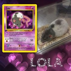 Artist Illustrates Pets Into Pokemon Cards And They Look Absolutely Adorable Fake Pokemon Cards, Pokemon Trading Card, Trading Cards, Breaking Bad, Game Of Thrones Cards, Kino Film, Custom Cards, Card Games, Fimo