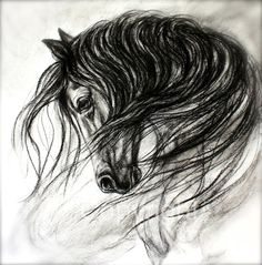 Horse canvas Art and Horse Drawing of Mane Dance by FerraroFineArt