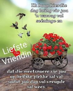 Good Morning Greetings, Good Morning Wishes, Good Morning Quotes, Lekker Dag, Afrikaanse Quotes, Goeie Nag, Goeie More, Bible Love, Birthday Wishes Quotes