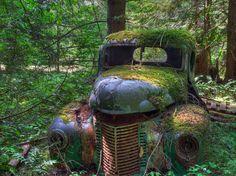 Camión abandonado en un bosque