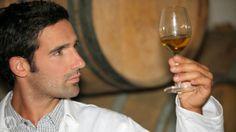 APPROVATA LA DIRETTIVA EUROPEA SUI PRODOTTI VITIVINICOLI AROMATIZZATI  STRASBURGO – lo scorso 14 gennaio 2014, il Parlamento europeo ha dato oggi il via libera a un accordo raggiunto con il Consiglio UE sull'etichettatura e la protezione delle indicazioni geografiche dei prodotti vitivinicoli aromatizzati quali, ad esempio, il Vermouth e il Marsala.