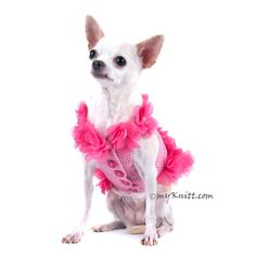 Dog Dress Pink Dog Clothes XXS Beach Summer Pet by myknitt on Etsy