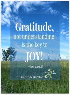 Joy in gratitude. Gratitude Quotes, Attitude Of Gratitude, Positive Thoughts, Positive Quotes, Anne Lamott, Joy Of The Lord, Me Quotes, Lady Quotes, Words Of Encouragement