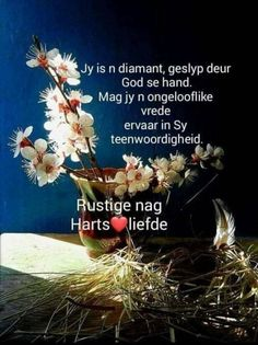 Funeral Quotes, Goeie Nag, Afrikaans Quotes, Thoughts, Night, Pictures, Ideas