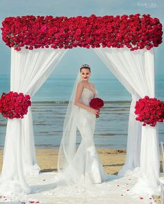 Couple Infuses This Bold Color Into Their Beach Wedding and The Photos are Breathtaking - Wedding Digest Naija wedding set up Lilac Wedding, Red Wedding Dresses, Wedding Colors, Dream Wedding, Red And White Weddings, Wedding Decorations On A Budget, Red And White Wedding Decorations, Budget Wedding, Wedding Planning