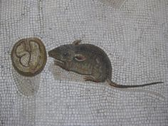 """Mouse and walnut from """"Unswept Floor"""" mosaic     settembre.2010+018.JPG (1600×1200)"""